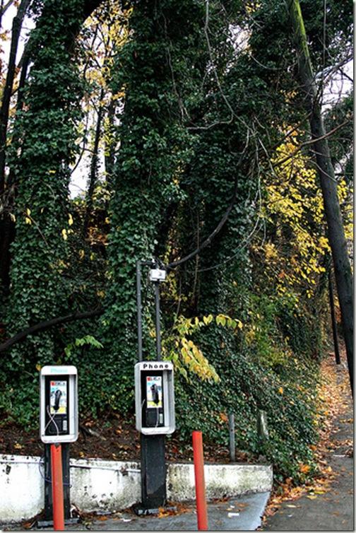 phone booth cr