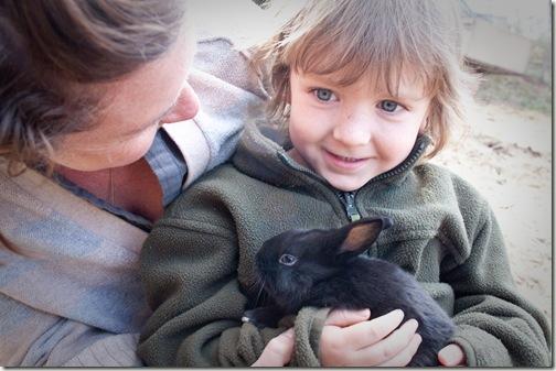 bunny love final 2-1