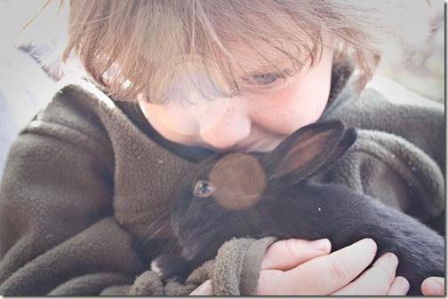 bunny love final 3-1
