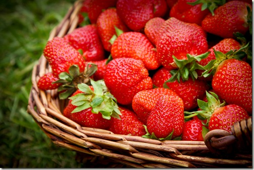 strawberry picking 8