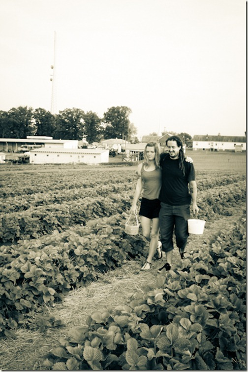 strawberry season sarah and jeremiah bbest (1 of 1)