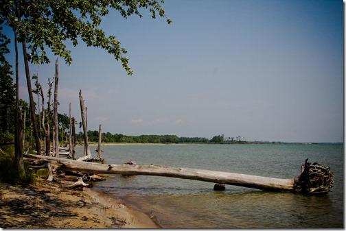 beach 24