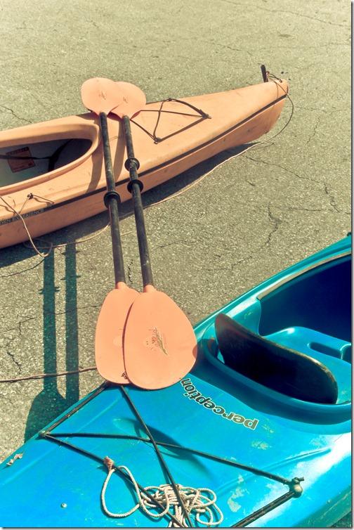 circus rafting 16 (1 of 1)