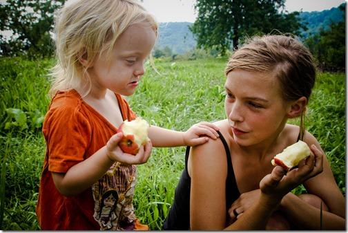 apples mcintosh 13