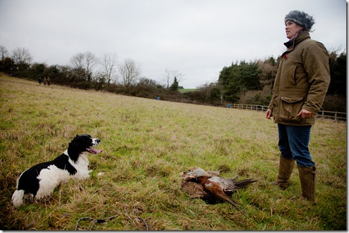 pheasant hunt salllykite3  jan2012