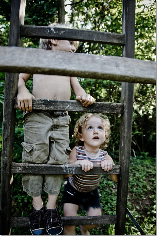 ladder boys