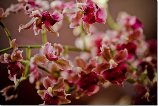 bouquet16