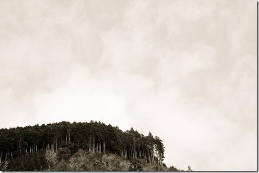 kyotokitayama14bw2