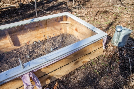 feb2014-coldframe-01-small (1 of 1)
