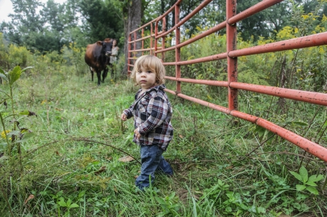 september2014-pasture-27 (1 of 1)