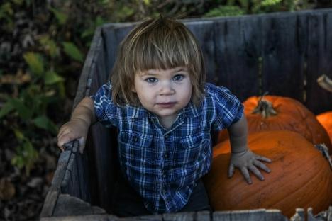 october2014-pumpkins-18 (1 of 1)