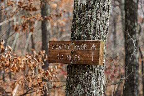 november2014-hike-08 (1 of 1)