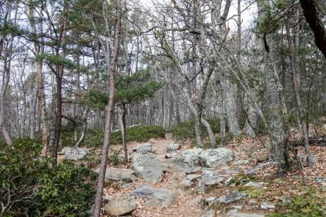 november2014-hike-18 (1 of 1)