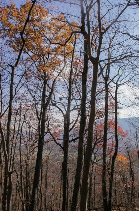 november2014-hike-38 (1 of 1)