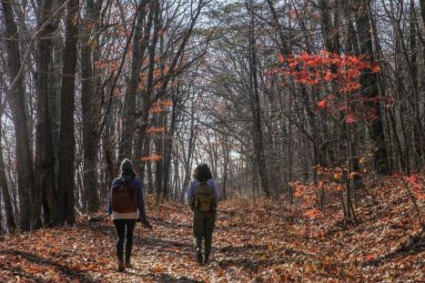 november2014-hike-39 (1 of 1)