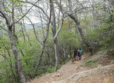 may2015-hike-07 (1 of 1)